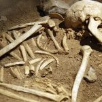 giant skeleton discovered