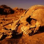 human skeleton buried in desert