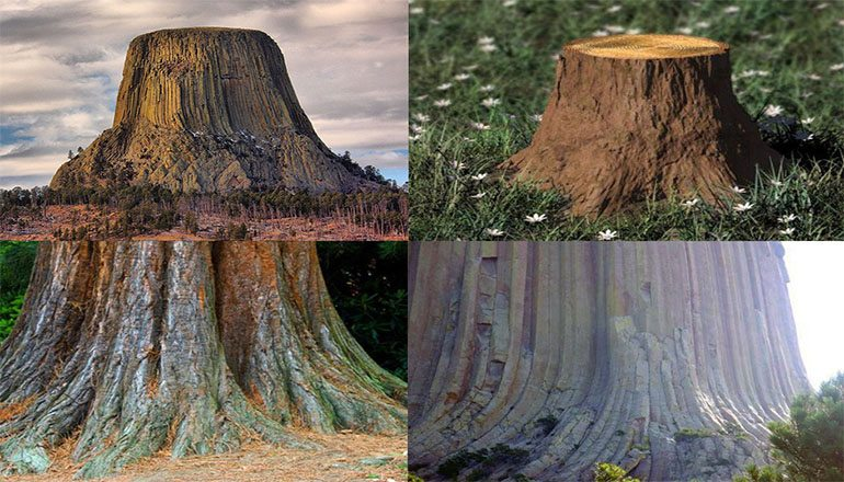 Devils Tower Wy >> Flat Earth Supporter Claims Mountains are the Ancient Remains of Gigantic Silicon Trees ...
