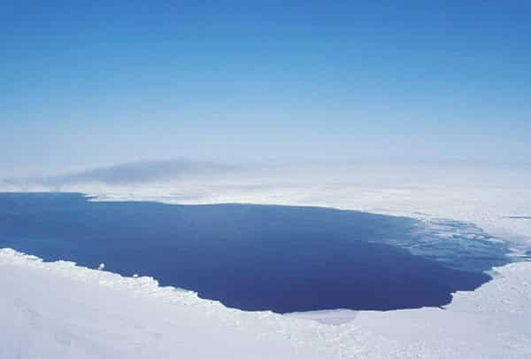 A polynya is a stretch of open water surrounded by ice.