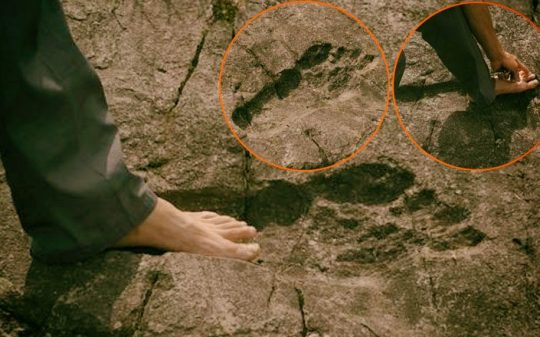 ancient giant footprint china