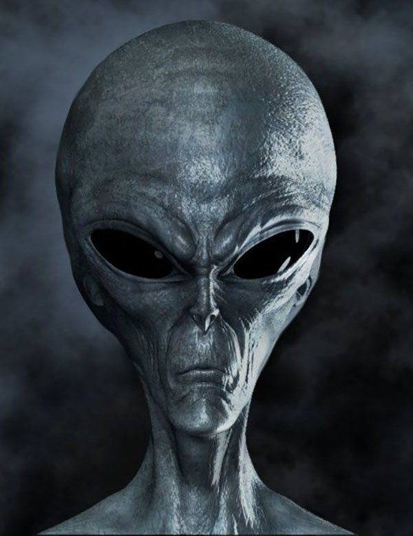 grey alien shot mugshot